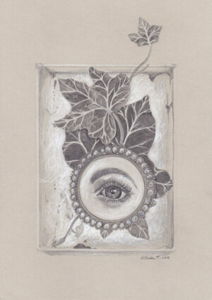 Stilllife with lovers eye and ivy in a box, drawing, tegning, art, kunst, Lisbeth Thygesen