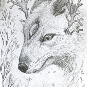 Polar, polar fox, creature, antler, Lisbeth Thygesen, drawing, pencil, tegning, blyant