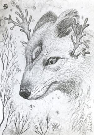 Polar, polar fox, creature, antler, Lisbeth Thygesen, drawing, pencil, tegning, blyant