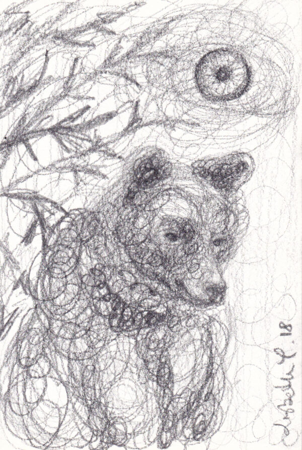 Bear spirit, Lisbeth Thygesen, bjørn, tegning, drawing, pencil, blyant