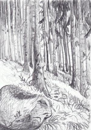 The stone creature sleeps, drawing, pencil, original, Lisbeth Thygesen