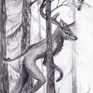 Wander deer, drawing, tegning, graphite, blyant, Lisbeth Thygesen