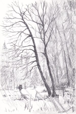 Lisbeth Thygesen, winter light, drawing, original, pencil