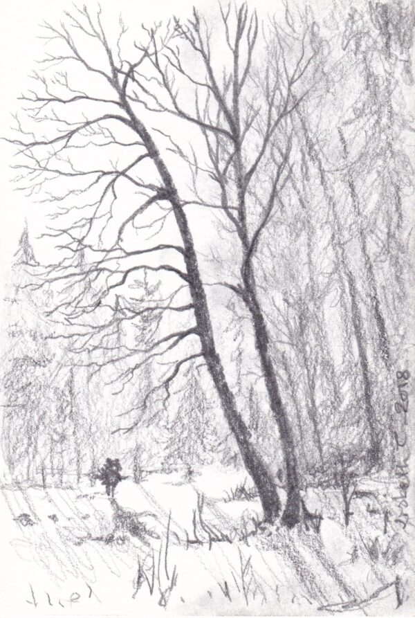 Lisbeth Thygesen, winter light, drawing, original, pencil