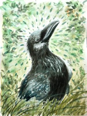 Happy Proud Raven by Lisbeth Thygesen