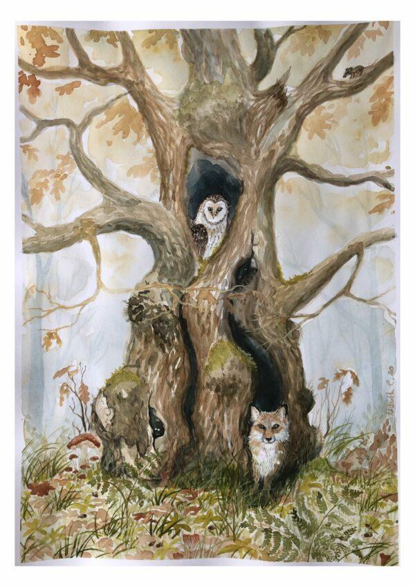 Oak, eg, træ, ræv, ugle, mus, egetræ, natur, Lisbeth Thygesen