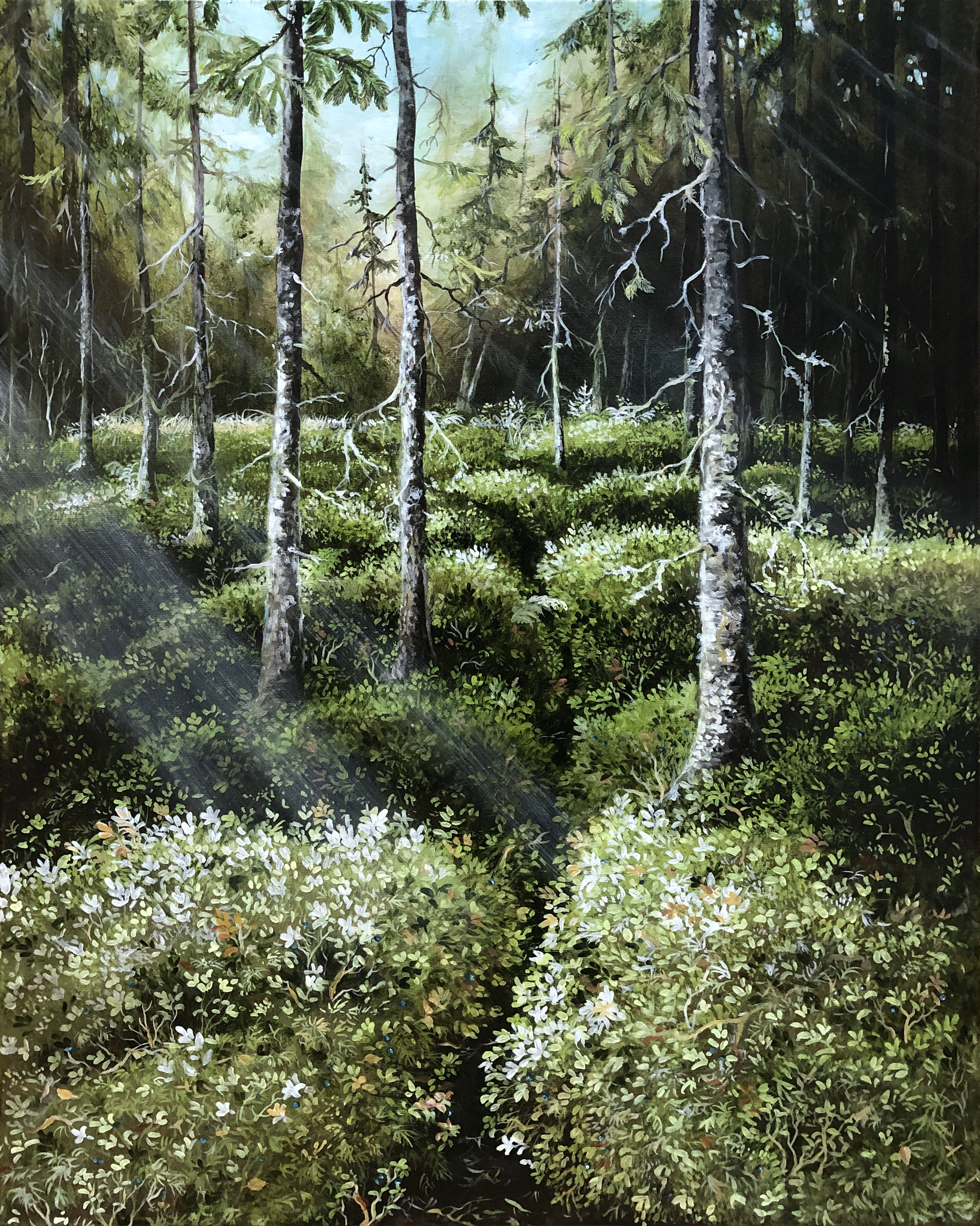 The forest talks IV