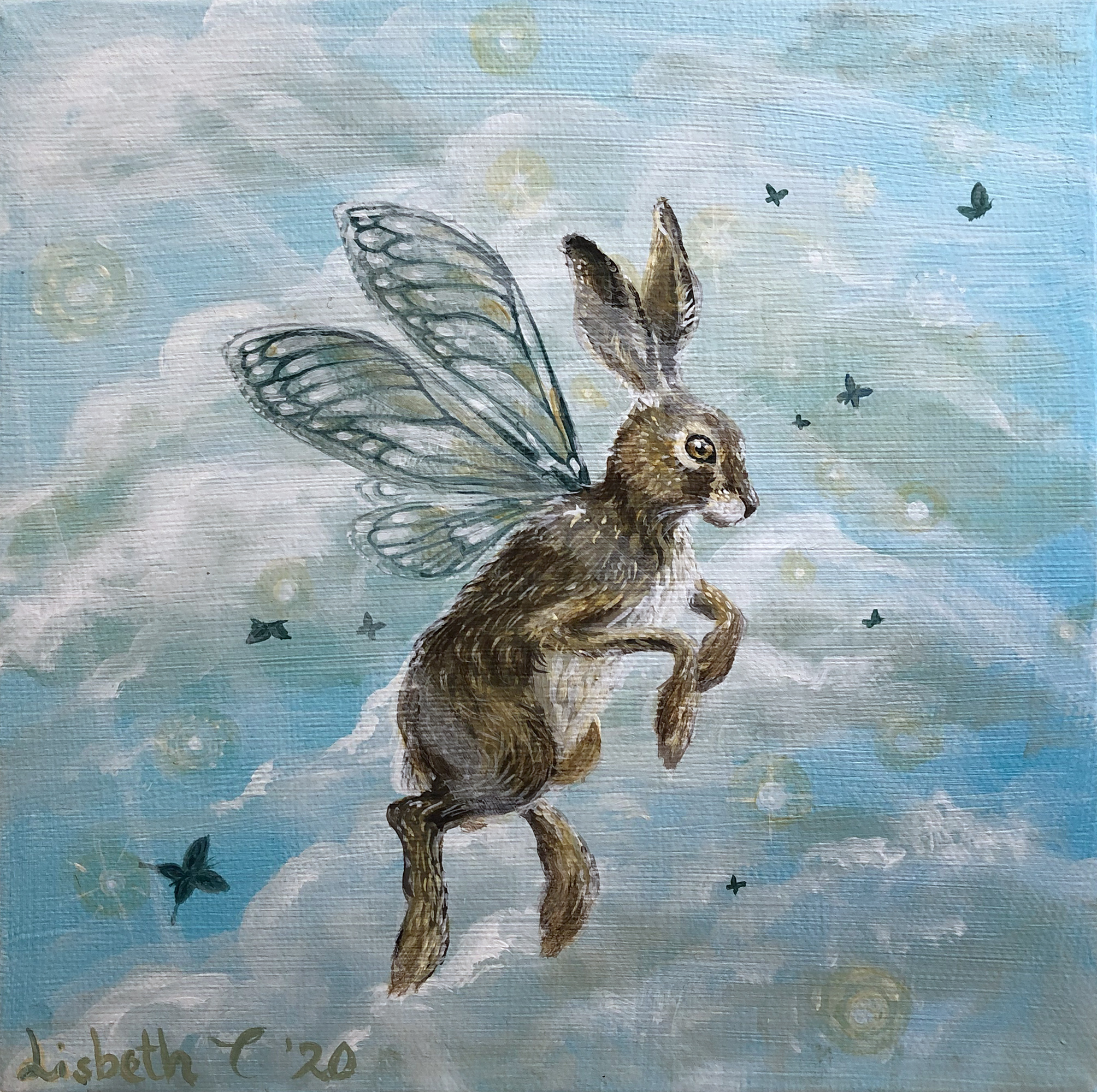 The fearless hare