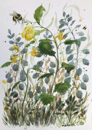 akvarel, Lisbeth Thygesen, watercolor, original